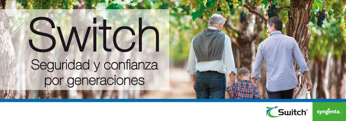 banner SWITCH padre, hijo y nieto