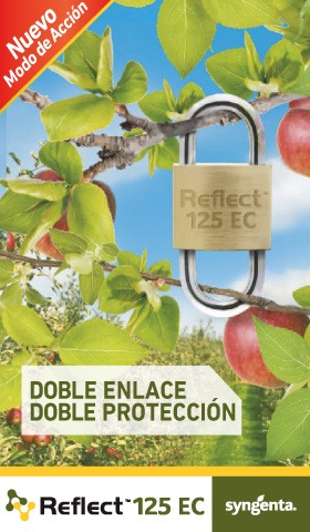 Banner Lateral Reflect 125 EC