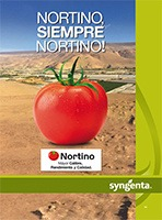 Volante Tomate Nortino