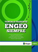 Engeo - insectos